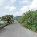 平成22年度海岸清掃(志喜屋・下田海岸)06